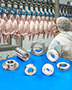 Shaft Collars and Couplings for Poultry and Meat Processing